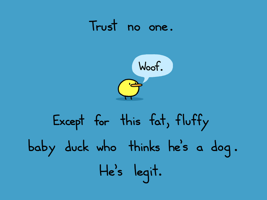 Image result for trust no one